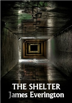 THE SHELTER BY JAMES EVERINGTON REVIEW
