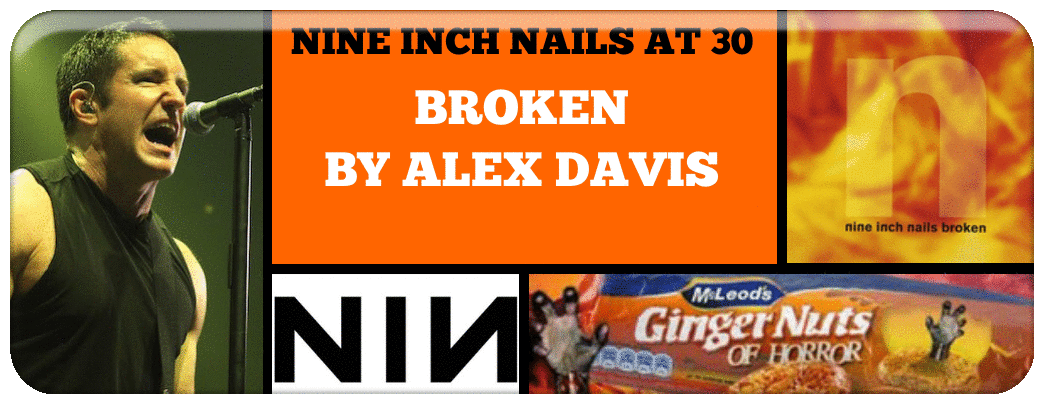 nine-inch-nails-at-30-a-review-series-of-every-nine-inch-nails-album_orig